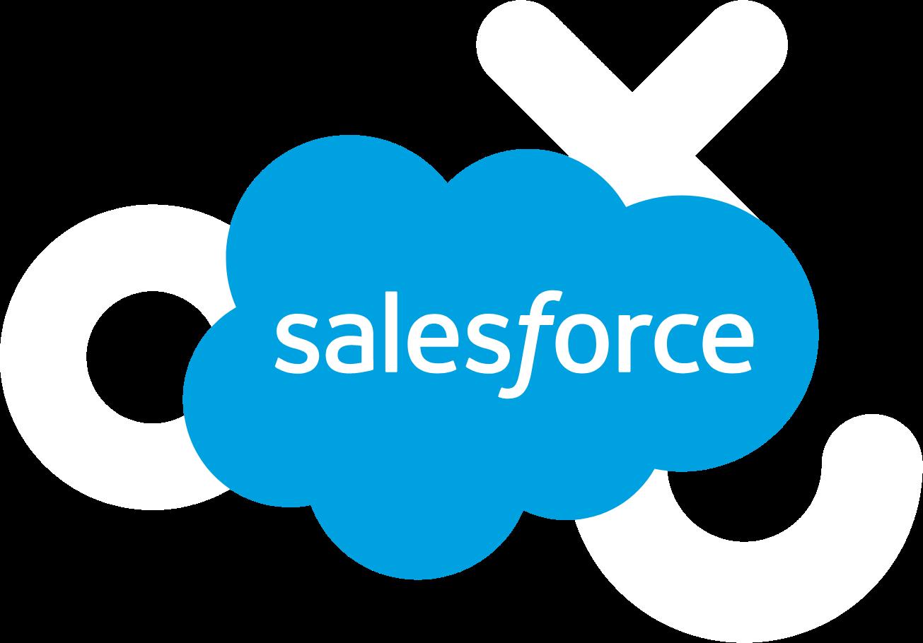 Interface representing Salesforce